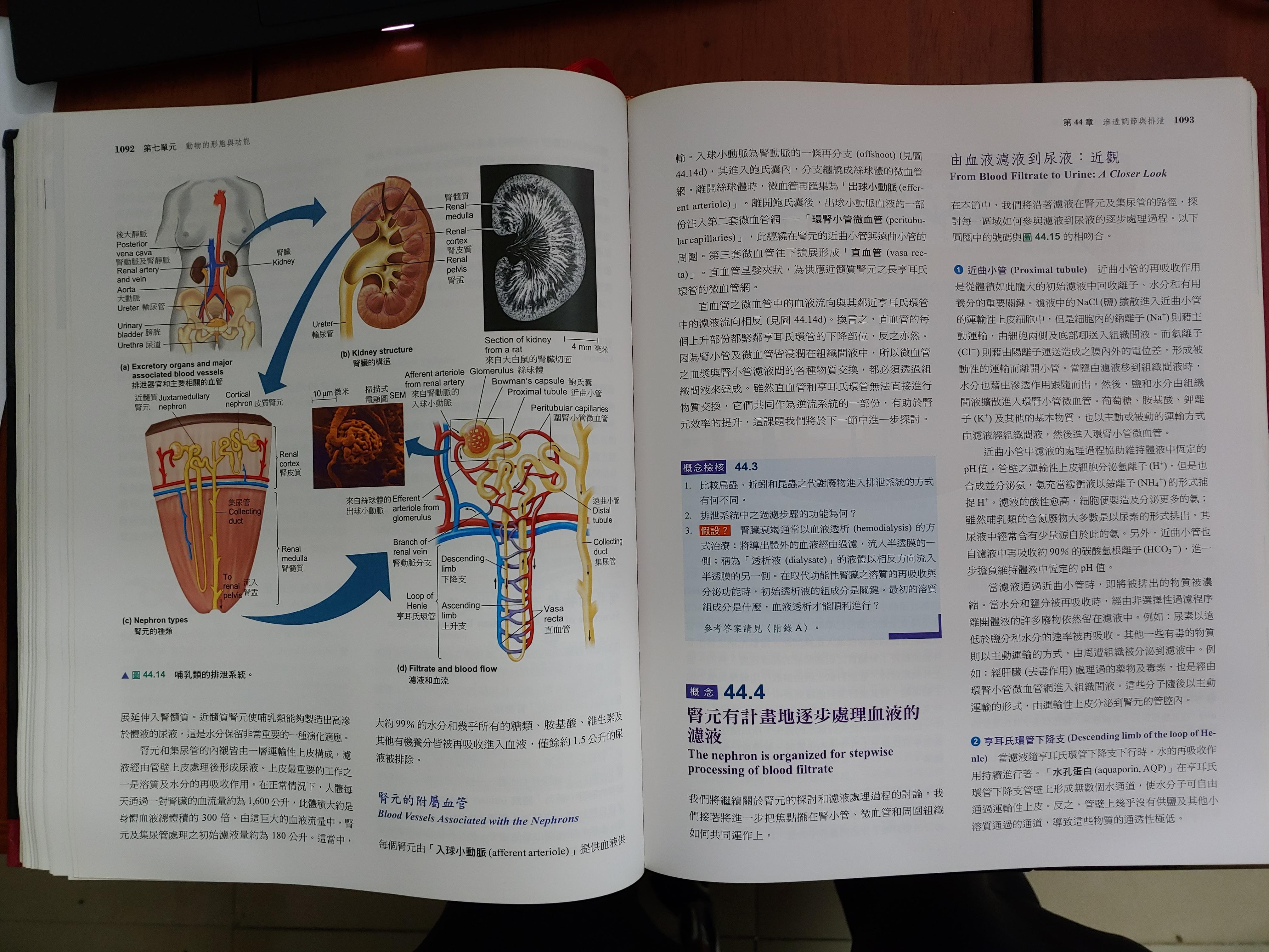 campbell 生物 學 中文 版